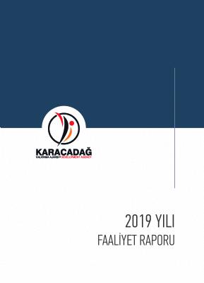 2019 Yılı Faaliyet Raporu