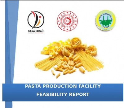 Pasta Production Facility Feasibility Report