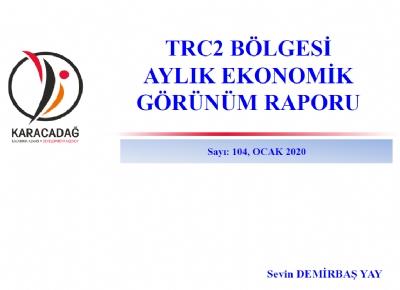 (Sayı 104 ) 2020 Ocak Ayı Ekonomik Görünüm Raporu