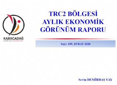 (Sayı 105 ) 2020 Şubat Ayı Ekonomik Görünüm Raporu