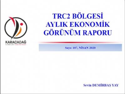 (Sayı 107) 2020 Nisan Ayı Ekonomik Görünüm Raporu