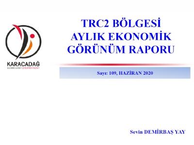 (Sayı 109 ) 2020 Haziran Ayı Ekonomik Görünüm Raporu
