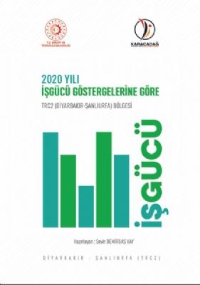 TRC2 ( Diyarbakır-Şanlıurfa ) Bölgesi 2020 Yılı İşgücü Göstergeleri