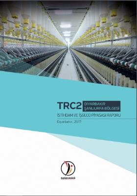 İstihdam ve İş Gücü Piyasası Raporu
