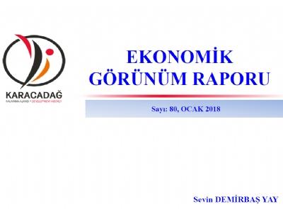 (Sayı 80 ) 2018 Ocak Ayı Ekonomik Görünüm Raporu