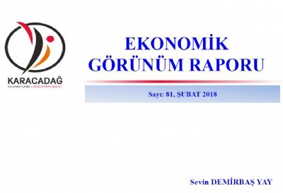 (Sayı 81 ) 2018 Şubat Ayı Ekonomik Görünüm Raporu