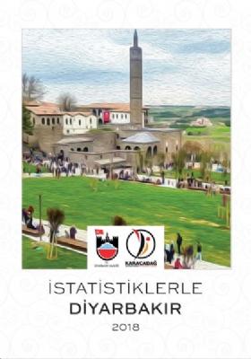 İstatistiklerle Diyarbakır 2018