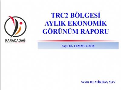 (Sayı 86 ) 2018 Temmuz Ayı Ekonomik Görünüm Raporu