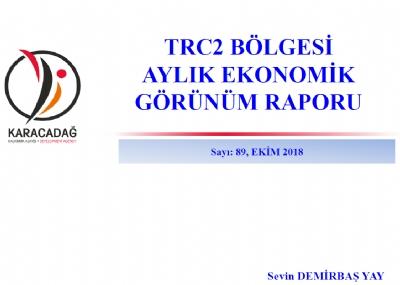 (Sayı 89 ) 2018 Ekim Ayı Ekonomik Görünüm Raporu