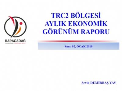 (Sayı 92) 2019 Ocak Ayı Ekonomik Görünüm Raporu