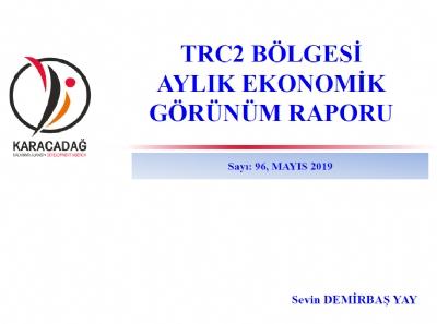 (Sayı 96) 2019  Mayıs Ayı Ekonomik Görünüm Raporu