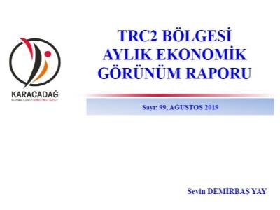 (Sayı 99) 2019 Ağustos Ayı Ekonomik Görünüm Raporu