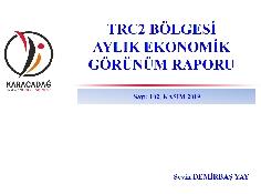 (Sayı 102 ) 2019 Kasım Ayı Ekonomik Görünüm Raporu