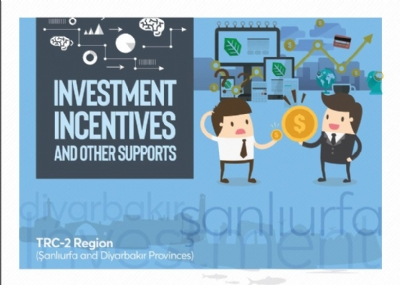 Incentives İn English 2018