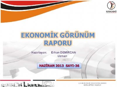 (Sayı 36) 2013 Haziran Ayı Aylık Ekonomik Görünüm Raporu