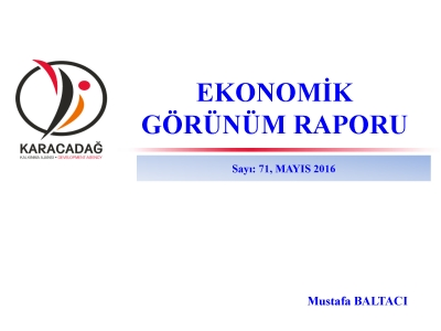 (Sayı 71) 2016 Mayıs Ayı Ekonomik Görünüm Raporu