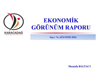 (Sayı 74) 2016 Ağustos Ayı Ekonomik Görünüm Raporu