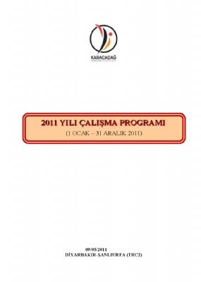 2011 Yılı Çalışma Programı