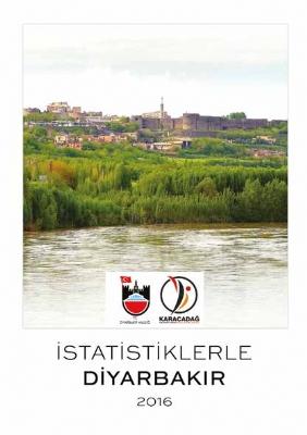 İstatistiklerle Diyarbakır (2016)
