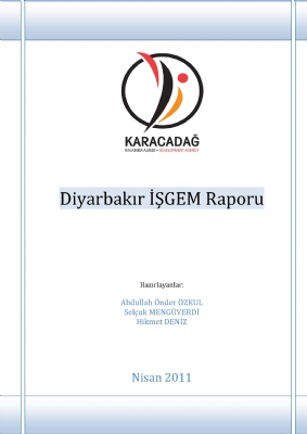 Diyarbakır İŞGEM Raporu