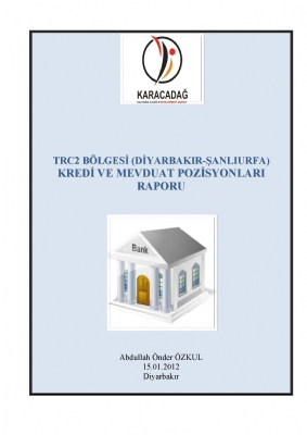 TRC2 Bölgesi Kredi Mevduat Raporu
