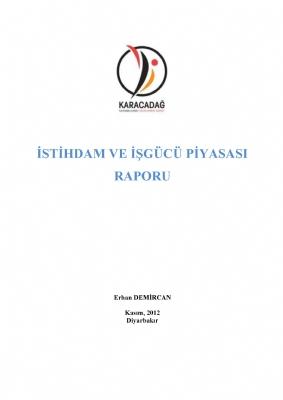 İstihdam ve İşgücü Piyasası Raporu