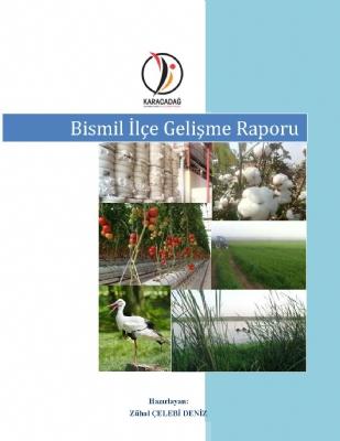 Bismil İlçesi Gelişme Raporu