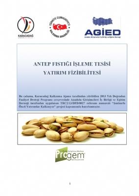 Antep Fıstığı İşleme Tesisi Yatırım Fizibilitesi