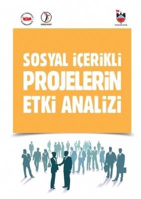 Diyarbakır'da Yürütülen Sosyal İçerikli Projelerin Etki Analizi Çalışması Projesi