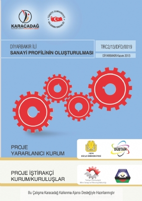 Diyarbakır İli Sanayi Profilinin Oluşturulması Projesi