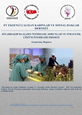 Diyarbakır'da Kadın İstihdamı Sorunlar ve Stratejik Çözüm Önerileri Projesi