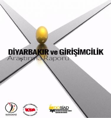 Diyarbakır ve Girişimcilik Araştırma Raporu