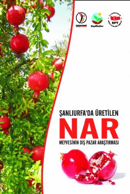 Şanlıurfa'da Üretilen Nar Meyvesinin Dış Pazar Araştırmasının Yapılması