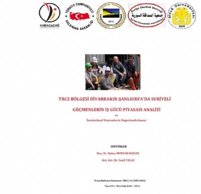 TRC2 Bölgesinde Suriyeli Göçmenlerin İşgücü Piyasası Analizi