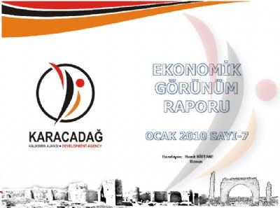 (Sayı 7) 2011 Ocak Aylık Ekonomik Görünüm Raporu