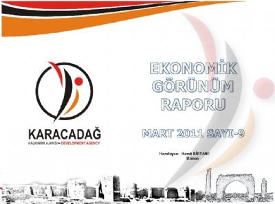 (Sayı 9) 2011 Mart Aylık Ekonomik Görünüm Raporu