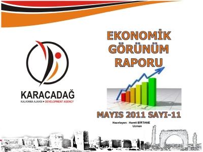 (Sayı 11) 2011 Mayıs Aylık Ekonomik Görünüm Raporu