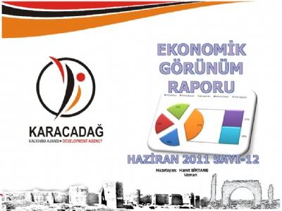 (Sayı 12) 2011 Haziran Ayı Aylık Ekonomik Görünüm Raporu