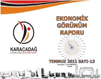 (Sayı 13) 2011 Temmuz Ayı Aylık Ekonomik Görünüm Raporu