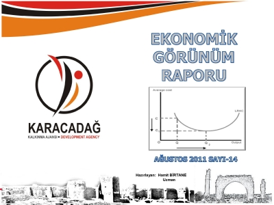(Sayı 14) 2011 Ağustos Ayı Aylık Ekonomik Görünüm Raporu