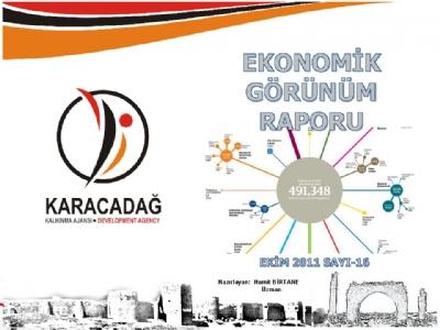 (Sayı 16) 2011 Ekim Ayı Aylık Ekonomik Görünüm Raporu