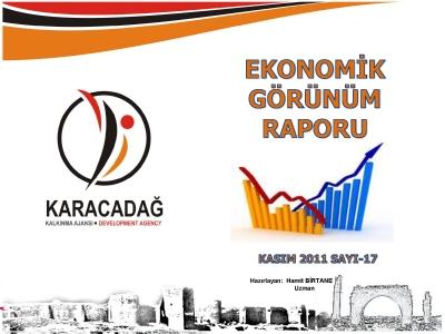 (Sayı 17) 2011 Kasım Ayı Aylık Ekonomik Görünüm Raporu
