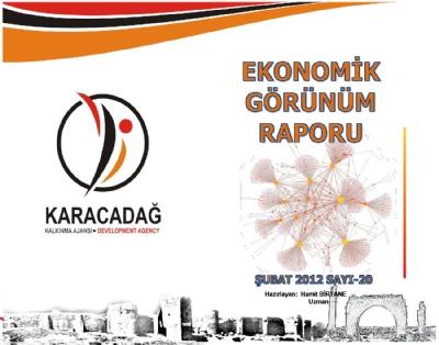 (Sayı 20) 2012 Şubat Ayı Aylık Ekonomik Görünüm Raporu