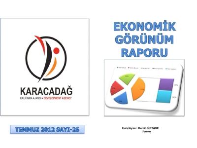 (Sayı 25) 2012 Temmuz Ayı Aylık Ekonomik Görünüm Raporu