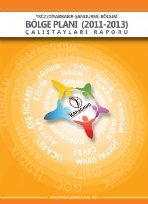 2011-2013 Çalıştay Raporu