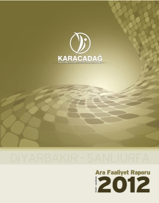 2012 Yılı Ara Faaliyet Raporu