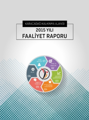 2015 Yılı Faaliyet Raporu