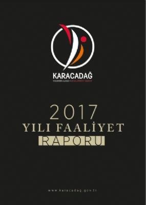 2017 Yılı Faaliyet Raporu