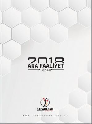 2018 Yılı Ara Faaliyet Raporu